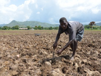 Haiti, SKDK in Carice