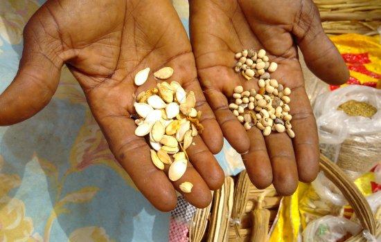 Senegal UCEM