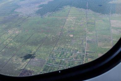 Mitten in den Monokulturen stehen die neu gebauten Häuser für die zugezogenen Familien. Viele Arbeitende werden aus entfernten Regionen Indonesiens hergeholt. Brot für alle / Urs Walter